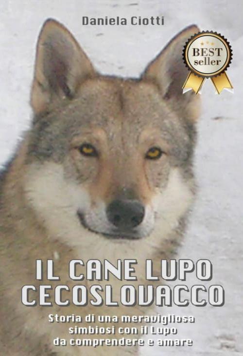 il cane lupo cecoslovacco